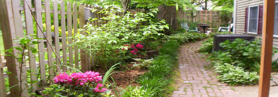 A healthy yard will help protect the whole watershed.