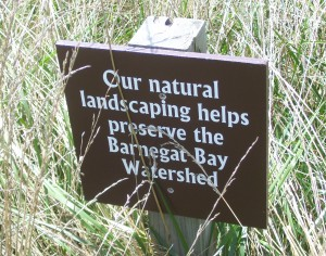 Maintaining a natural landscape will help prevent erosion and other landscape degradation.