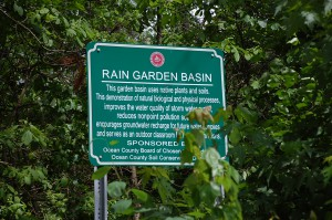 One of many rain garden basins retrofitted by the OCSCD in partnership with Ocean County Planning