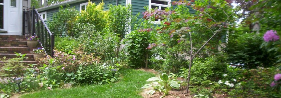 A beautiful lawn starts with a healthy soil!