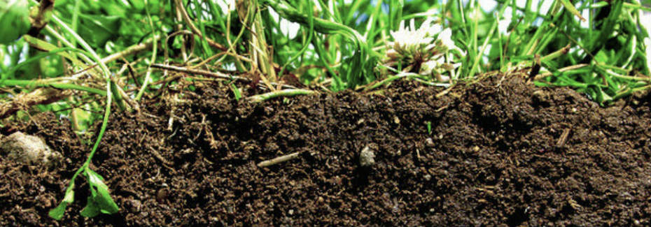 Soil peat for Different types of soil wikipedia