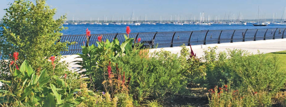 Rain Garden in Keyport, NJ