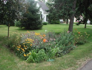 A native plant rain garden is a beautiful way of enhancing your landscape.
