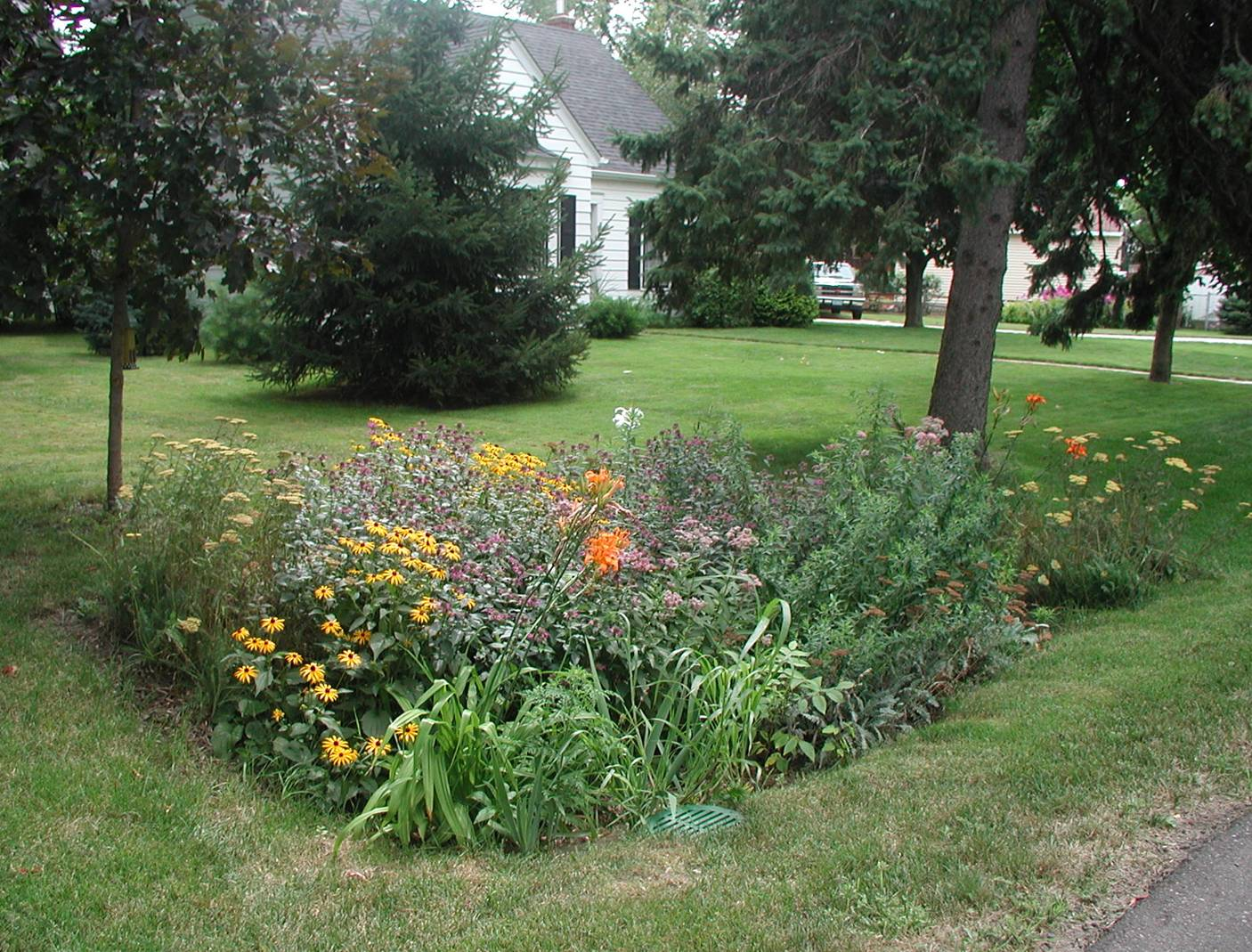 Rain Garden Resources Ocean County Soil Conservation