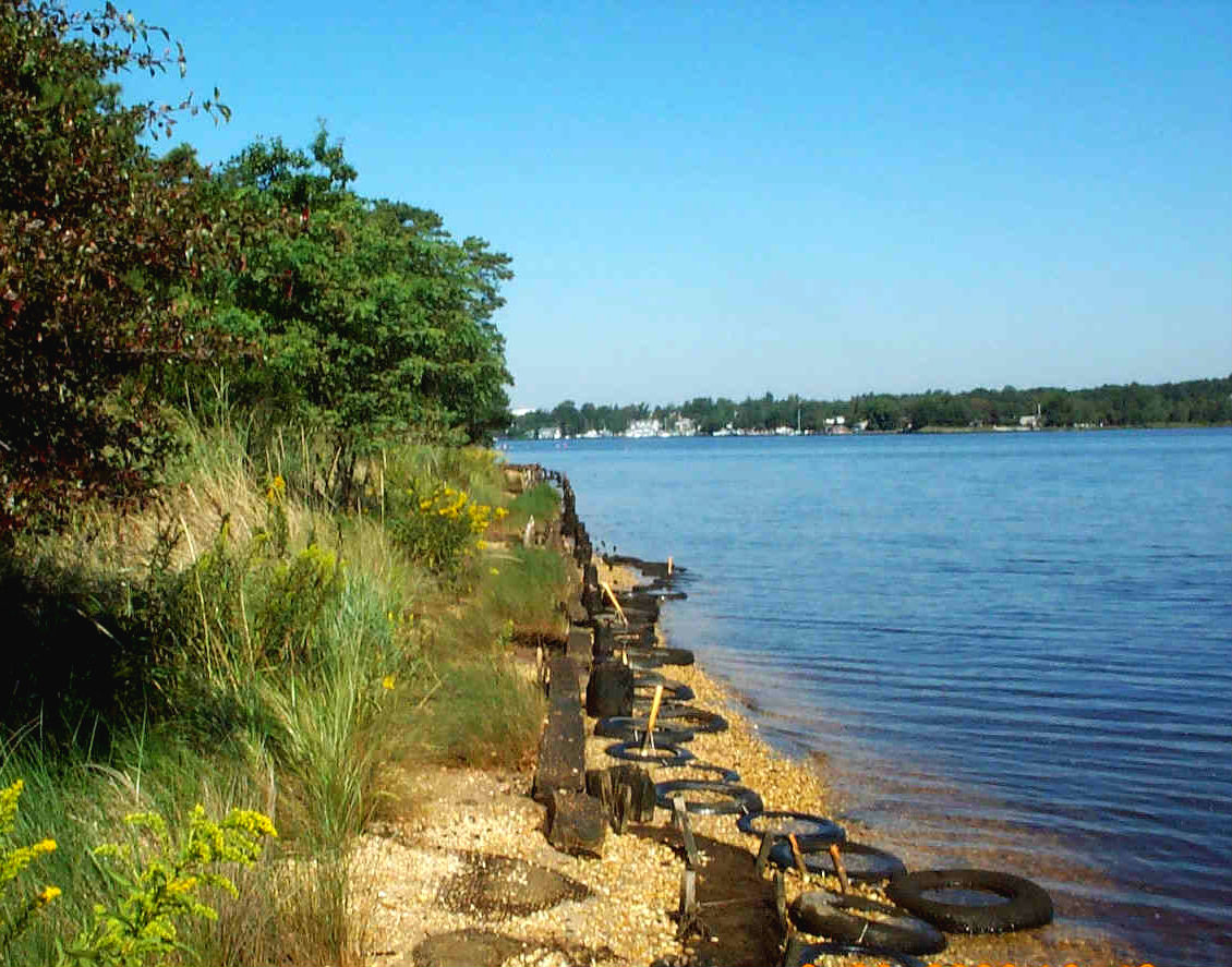 Shoreline restoration projects such as this one use recycled materials to strengthen the natural land along the water.