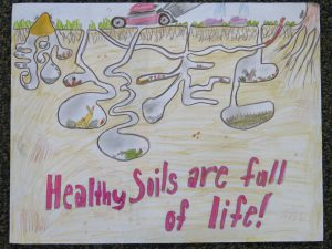 nj conservation 2018 annual poster contest ocean county soil
