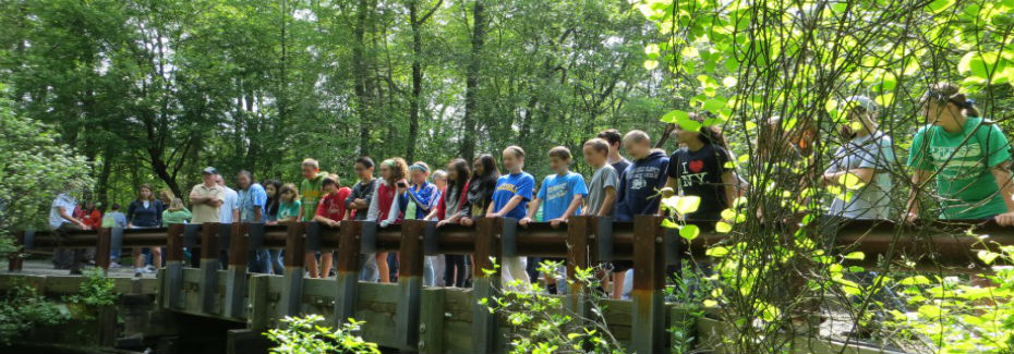 Students watching release from the bridge