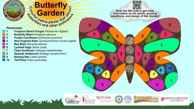 Butterfly garden (FINAL FOR CARA)