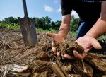 NRCS_Soil_In_Hands_photo