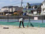 planting-beach-grass-at-bay-head-shores